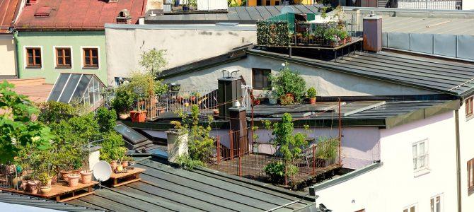 Responsabilidad por filtraciones de agua desde terrazas