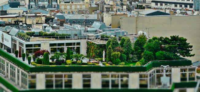 Se Pueden Hacer Obras En Las Terrazas De Uso Privativo